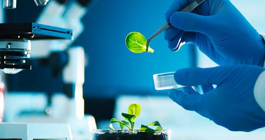 Національний фонд досліджень України розпочинає перші 2 конкурси наукових проєктів